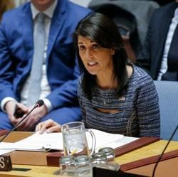 US Ambassador to the UN Nikki Haley speaks during a Security Council meeting at the UN Headquarters in New York City.