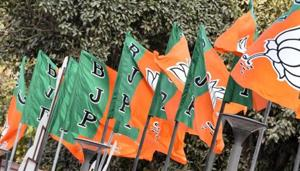 With 324 members, the BJP and its allies are sure to win eight seats. This will leave 28 additional votes with the saffron party.(Mohd Zakir/HT File)