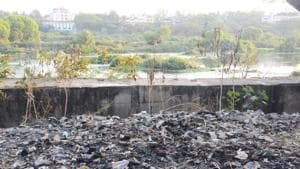 Birds seen on the polluted Mula Mutha river at Dr Salim Ali bird sanctuary in Pune.(HT PHOTO)