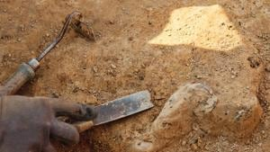 The seven bone fragments analysed by researchers were excavated between 2005 and 2015 at the Lingjing site in central China's Henan province.(Representative image)