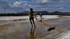 In Mumbai, salt pan land is distributed across Mulund, Bhandup, Trombay, Wadala, Mankhurd-Chembur, Dahisar and Goregaon(FILE)