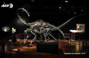 Skeletons of an allosaurus and a diplodocus are up for auction in Paris, marketed as hip interior design objects(AFP Photo)