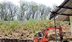 The biodiversity park is spread over 100 acres and is a protected region currently under the jurisdiction of the Pune Municipal Corporation (PMC).(Ravindra Johi/HT Photo)