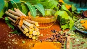 Neem helps rejuvenate your skin, and prevents recurrence of acne and blemishes.(Shutterstock)