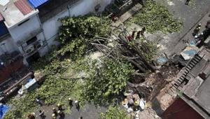 Fire department personnel work to clear the street, blocked by a tree which got uprooted in the recent massive storm, behind the Police Headquarters at Lalbazar in Kolkata.(PTI File Photo)