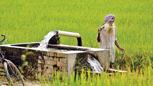 As per the report available with municipal corporations of these cities of Punjab, every year, approximately 10% of tubewells are going dry.(HT File/Representative Image)