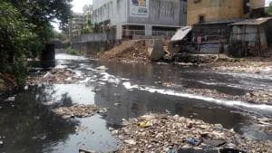 The seven-kilometre Poisar river is brimming with untreated domestic waste, sewage, and carcasses, said NGO Watchdog Foundation.(HT Photo)