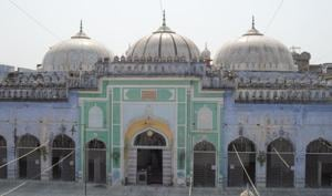 The mosque's construction was completed during the rule of Naseeruddin Mehmood.(HT Photo)