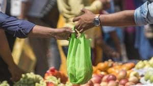 A government notification on March 23 mandated a complete ban on manufacturing, storing, transporting, distributing etc, and use of plastic bags.(HT File (Representational Image))