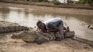 A boy leans on the back of a crocodile on May 19, 2018 at a pond in Bazoule in Burkina Faso, a village which happily shares its local pond with 'sacred' crocodiles.(AFP Photo)