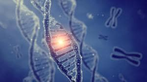 Can this new gene discovery help early diagnosis of Alzheimer's?(Shutterstock)