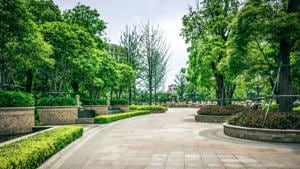 Dilapidated and vacant spaces are factors that put residents at an increased risk of depression and stress. Greening vacant land is a highly inexpensive and scalable way to improve cities and enhance people's health.(Shutterstock)