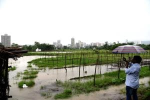 The Kharghar land was given to Koyna project-affected persons who later sold it to a builder(HT Photo)