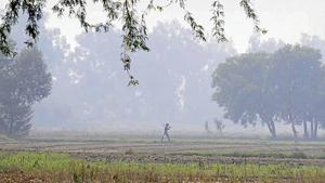 Around 2,200 farmers' houses need to be relocated and land from around 9,500 farmers is required for the Jewar airport project.(HT FILE PHOTO)