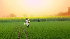 If farmers, the world over, including in emerging economies such as India, are able to benefit from such approaches towards price and yield risk management, they will be able to build a great deal of resilience in their approaches towards agriculture.(Getty Images)
