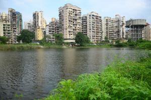 Murbi Talao at Sector 18/19 Kharghar in Navi Mumbai(HT File)