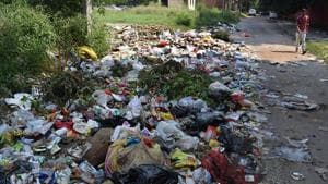 Garbage strewn along the road near the main market in Sector 33, Chandigarh.(SS Chopra/HT)