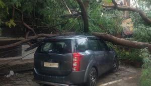 A large tree fell on a car at DLF phase1, E Block on Sunday night after heavy rain that damaged several electric poles and disrupted power supply, in Gurugram, India, on Monday, September 24, 2018.(Yogendra Kumar/HT PHOTO)