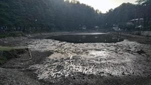 The problem of silting and seepage first appeared in mid-2000s in the Dal Lake at Naddi village.(HT Photo)