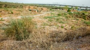 The campaign to save the Aravalli Biodiversity Park (ABDP) continued to gain momentum on October 30.(HT File Photo)