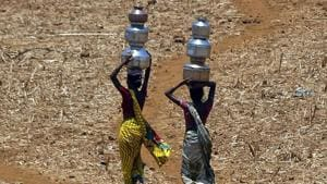 While the chief minister had unveiled Jalyukt Shivar, an ambitious water shed development scheme in a bid to make the state's villages drought-free, it is clear now that the plan does not guarantee success(AP)