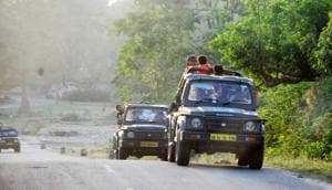 Tourists in Corbett Tiger Reserve in Rampur.(HT File)