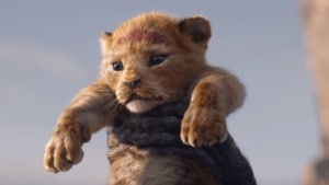 The Lion King's baby Simba has captured the internet's imagination.