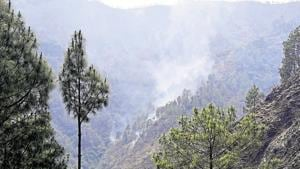 The Uttarakhand forest department finally got the approval from the state government in November, to form a research body to conserve the flora of the Himalayan state.(HT FIle / Reprenstative Image)