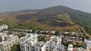 A day after a massive fire on a plot of land in Aarey forest, a black patch showed the extent of the blaze.(Satyabrata Tripathy/HT Photo)