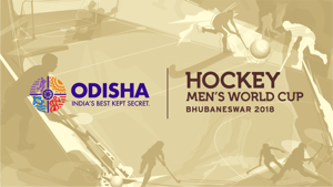Instead of reacting to the quarter-final loss, India should look forward to future competitions like the next World Cup and a spot in the 2020 Tokyo Olympics, says former Indian captain Sardar Singh(Odisha government)