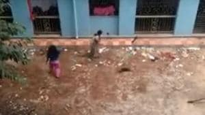 A video grab shows two women clobbering 16 puppies to death in Kolkata.(Sourced from Facebook)