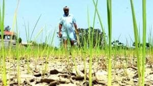 The Modi government has worked out a relief package for farmers including interest-free farm loans and premium-free crop insurance ahead of its interim Budget to be tabled on February 1, informed sources say.(HT Photo)