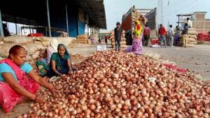 Women workers sort onions at a wholesale vegetable market in Bhopal.(PTI)