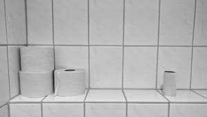 Consumers' use of toilet paper wiping out habitat, heating planet, report says