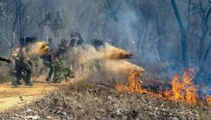 Karnataka scrambles to contain wildfire in Bandipur forest