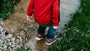 Spending childhood in greener spaces may prevent mental disorders later