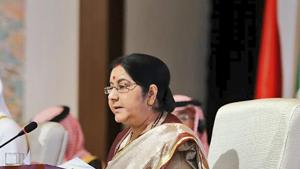 India used its maiden appearance at a meeting of the Organisation of Islamic Cooperation (OIC) on Friday to launch a thinly-veiled attack on Pakistan-backed terror.(PTI)