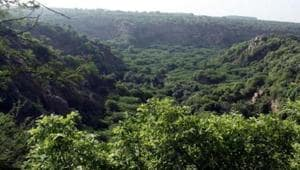 The Supreme Court on Friday warned the Haryana government against disturbing the Aravalli hills or forest area, and said the state administration would be in trouble if constructions were allowed there.(HT File Photo)