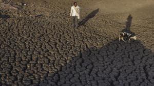 Polling will be held for 10 Lok Sabha seats in Maharashtra's Marathwada and Vidarbha regions on Thursday amid a growing water crisis.(Satish Bate/HT File Photo)