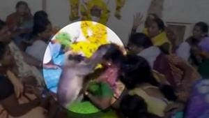 According to locals, this isn't the first time something like this has happened and the langur has been attending people's funerals for about a year.(Screengrab)
