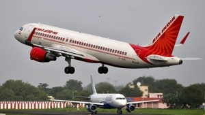 Such incidents cause considerable losses to the airline industry besides posing a threat to passenger safety, experts say.(PTI/ Representative Image)