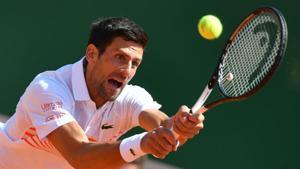 File image of Novak Djokovic(AFP)
