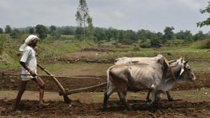 Lok Sabha elections 2019: Farm crisis a key issue in Madhya Pradesh's Khandwa