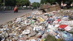 MCG commissioner Yashpal Yadav, however, said Ecogreen Energy had only been granted permission to use the site for waste collection.(HT Photo)