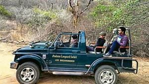 Leopard count up by 12% in Jhalana forests of Jaipur