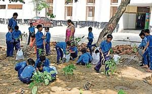 Govt targets 2.2 million saplings this year but staff crunch looms