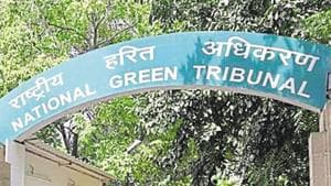 No encroachment on forest land in Southern Ridge: Delhi govt to NGT