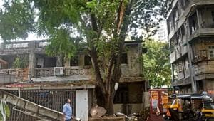 The spot in Malad where Shailesh Rathod died after the branch of a tree collapsed early on Friday.(Satyabrata Tripathy/HT Photo)