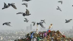 Wards must sort, process their own waste, says BMC