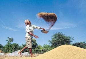Though the wheat purchase did drop in UP under the present government this year, it is still much higher than wheat purchase being done before the current regime came to power.(Representative image)